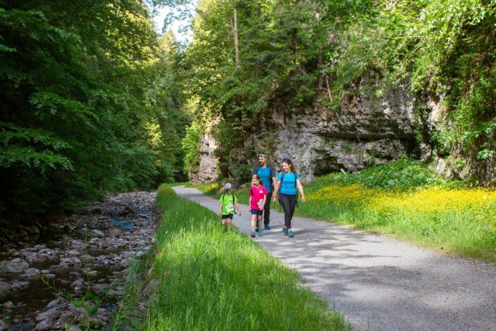 passeggiata per famiglie Andalo-Molveno lungo il rio Lambin